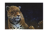 Jaguar Giclee Print by Durwood Coffey