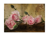 Pink Carnations Giclee Print by Bob Rouse