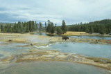 Yellowstone 03 Photographic Print by Gordon Semmens