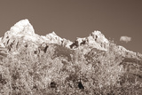 Sepia Teton 3 Photographic Print by Gordon Semmens