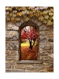 Window to Autumn Giclee Print by Jessica Jenney