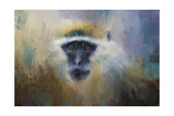 African Grivet Monkey Giclee Print by Jai Johnson