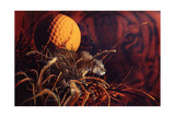 Tiger in the Woods Giclee Print by Gordon Semmens