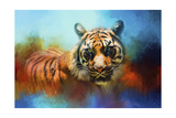 Colorful Expressions Tiger 2 Giclee Print by Jai Johnson