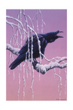 Raven Giclee Print by Harro Maass