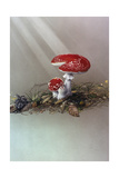Mushrooms Giclee Print by Harro Maass