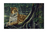 Jaguar by the River Giclee Print by Harro Maass