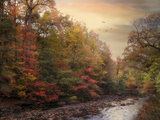 Riverbank Beauty Photographic Print by Jessica Jenney