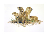 Group Outing Giclee Print by Joh Naito