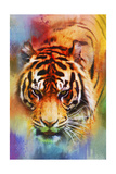 Colorful Expressions Tiger Giclee-trykk av Jai Johnson