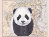 Asian Panda Giclee Print by Jane Wilson