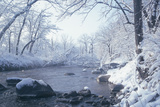 Buffalo River 51 Photographic Print by Gordon Semmens