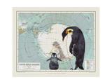 Antartica Giclee Print by Jane Wilson