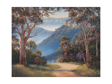 Spring Morning - Katoomba Giclee Print by John Bradley