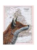 British Fox Impression giclée par Jane Wilson