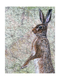 March Hare Giclee Print by Jane Wilson