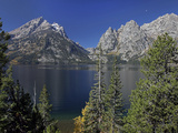 Tetons Photographic Print by J.D. Mcfarlan