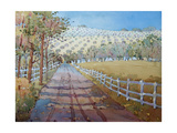 This way to the Vineyard Giclee Print by Joyce Hicks