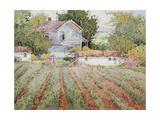 A Farmhouse I Saw in Virginia Giclee Print by Joyce Hicks