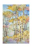 Aspen Color Giclee Print by Joyce Hicks