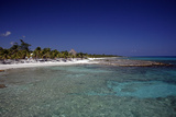 Yucatan Beach Photographic Print by J.D. Mcfarlan