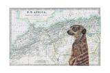 Watchful Giclee Print by Jane Wilson