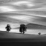 Moravia Photographic Print by Maciej Duczynski
