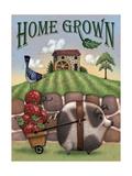 Pig HG Giclee Print by Margaret Wilson