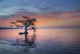 Alone at Sunrise Lámina fotográfica por Moises Levy