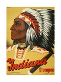 Indiana Stumpen Giclee Print by Marcus Jules