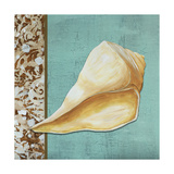 Yellow Seashell - Tan Side Border Teal Crackle Back Giclee Print by Megan Duncanson