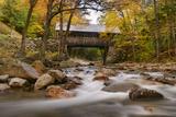 The Flume Bridge Photographic Print by Michael Blanchette