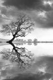 New Beginning Reflect Fotografie-Druck von Moises Levy