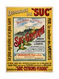 Demandez un Suc Giclee Print by Marcus Jules