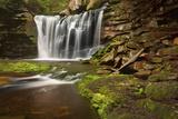 Spring at Elakala Falls Photographic Print by Michael Blanchette