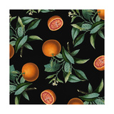 Nature's Bounty - Oranges Giclee Print by Mindy Sommers