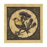 Apple Grossbeak Bird Giclee Print by Michele Meissner
