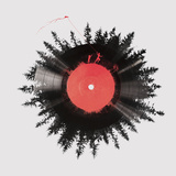The Vinyl of My Life Giclee Print by Robert Farkas