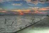 Key West Sunrise Gulls and Pier Photographic Print by Robert Goldwitz