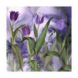 Purple Dream II Giclee Print by Mindy Sommers