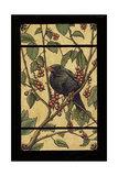 Apple Raven Giclee Print by Michele Meissner
