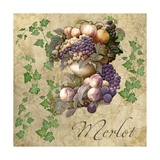 Merlot Giclee Print by Mindy Sommers