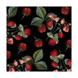 Nature's Bounty - Strawberries Giclee Print by Mindy Sommers