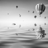 Love is in Air VII Photographic Print by Moises Levy