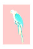Summer Parrot Giclee Print by Robert Farkas