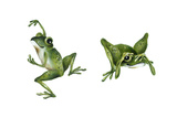 April Showers - Frogs Giclee Print by Peggy Harris