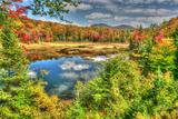 Adirondack Pond Photographic Print by Robert Goldwitz