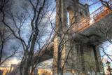 Brooklyn Bridge Early Spring Photographic Print by Robert Goldwitz