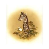 Giraffe Giclee Print by Peggy Harris