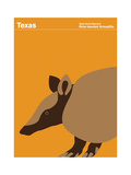 State Poster TX Texas Giclee Print